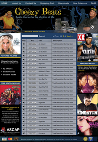 Webphotographix Homepage Design Layout - Cbeezy Beats website
